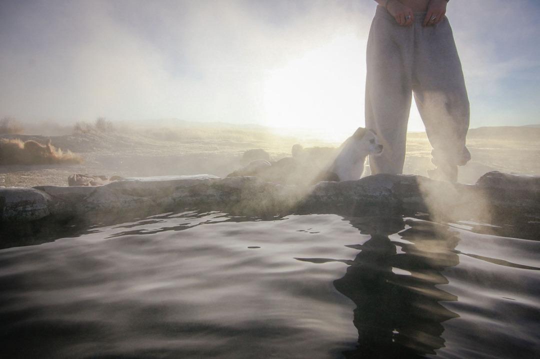 mammoth hot springs-8