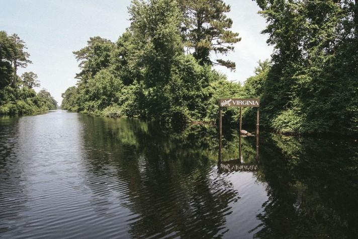 dismal swamp-15