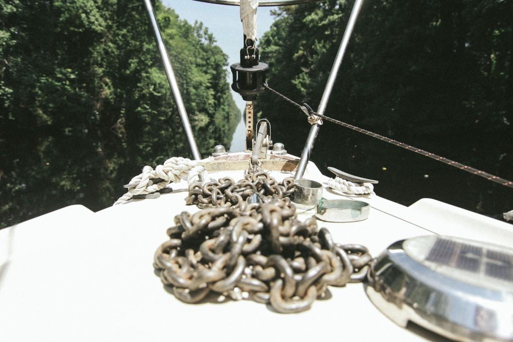 dismal swamp-8