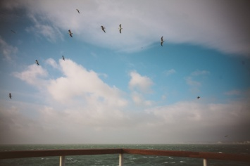 Ferry-11